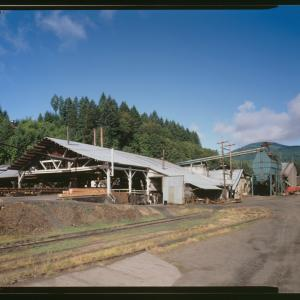 Hull Oakes Sawmill, the last steam powered sawmill in operation